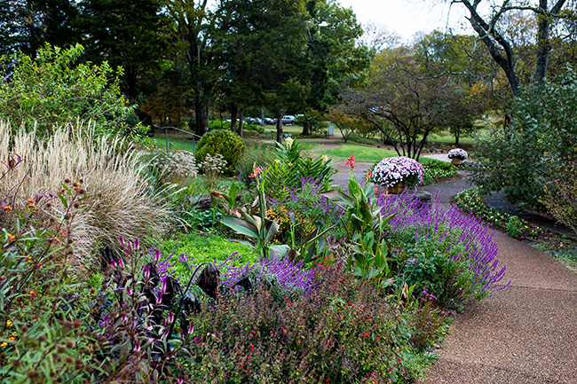 Scenic Photo: UT Trial Gardens