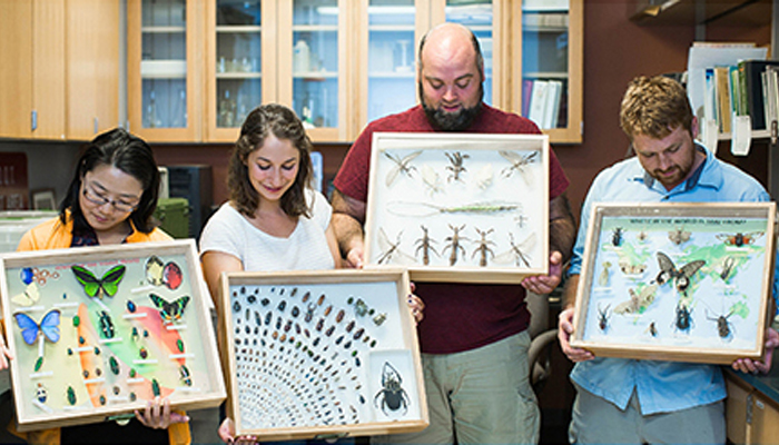 Dr. Grant's graduate students hold up their insect collection displays