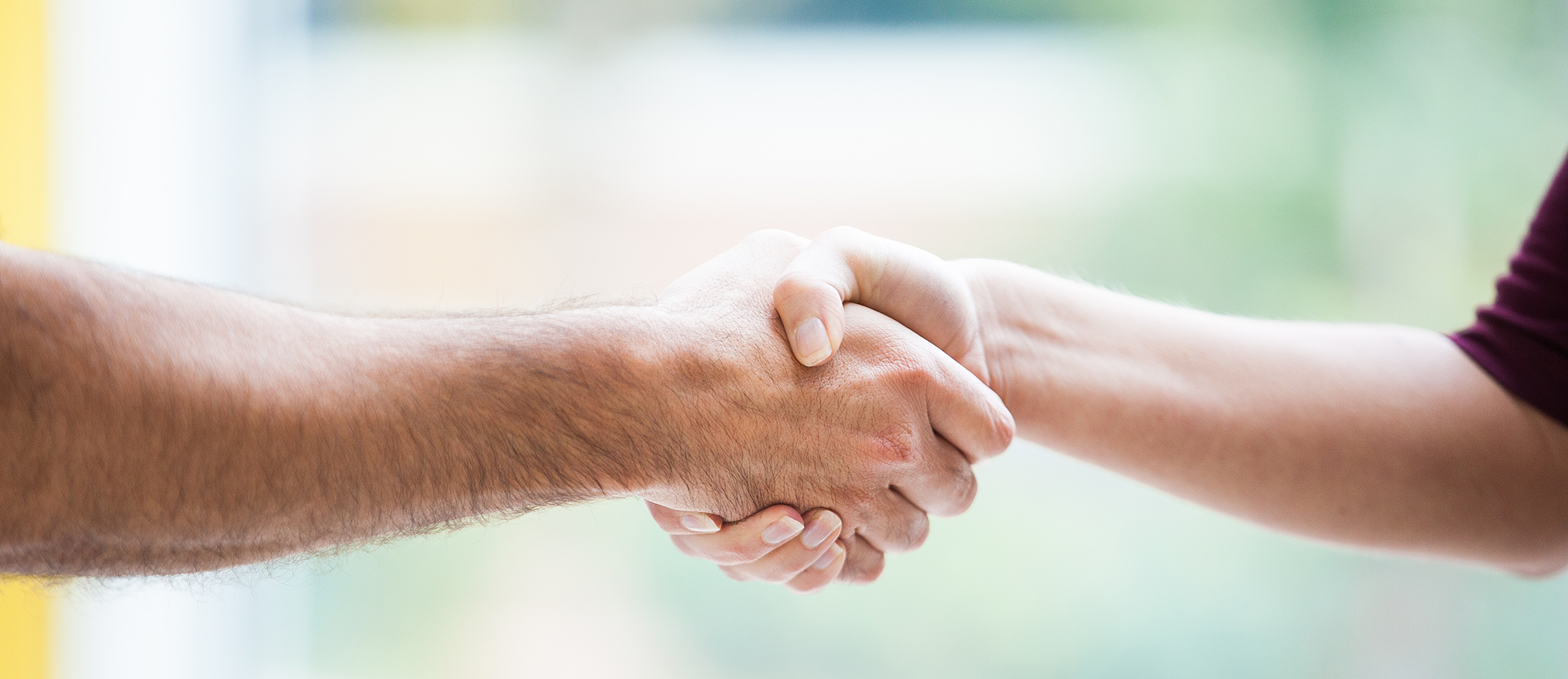 A handshake, a bond of trust and respect