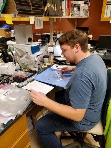 Matthew Longmire in Lab